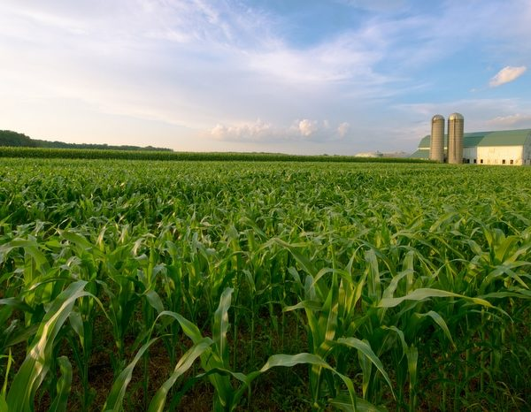 Agricultural Property Taxes